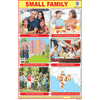 SMALL FAMILY SIZE 24 X 36 CMS CHART NO. 286 - Indian Book Depot (Map House)