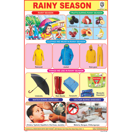 RAINY SEASON CHART SIZE 12X18 (INCHS) 300GSM ARTCARD - Indian Book Depot (Map House)