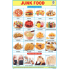 JUNK FOOD SIZE 24 X 36 CMS CHART NO. 291 - Indian Book Depot (Map House)