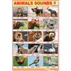 ANIMALS SOUNDS SIZE 24 X 36 CMS CHART NO. 305 - Indian Book Depot (Map House)