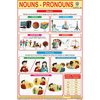 NOUNS PRONOUNS SIZE 24 X 36 CMS CHART NO. 306 - Indian Book Depot (Map House)