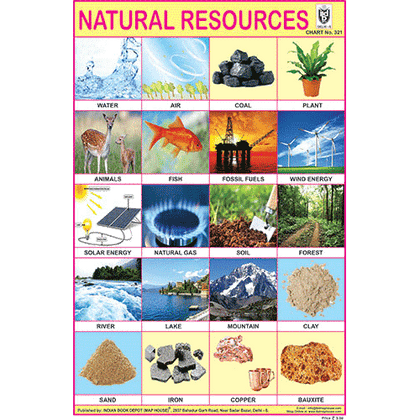 NATURAL RESOURCES CHART SIZE 12X18 (INCHS) 300GSM ARTCARD - Indian Book Depot (Map House)