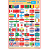 FLAGS OF THE NATIONS CHART SIZE 12X18 (INCHS) 300GSM ARTCARD - Indian Book Depot (Map House)