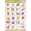 FLOWER CHART 24 PHOTOS (WHITE) SIZE 24 X 36 CMS CHART NO. 34 - Indian Book Depot (Map House)
