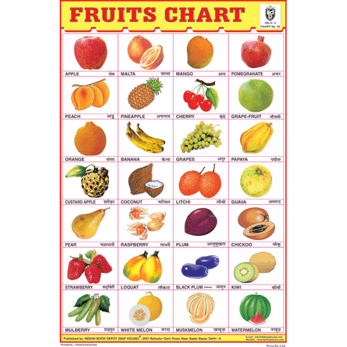 FRUITS CHART (28 PHOTO) CHART SIZE 12X18 (INCHS) 300GSM ARTCARD - Indian Book Depot (Map House)