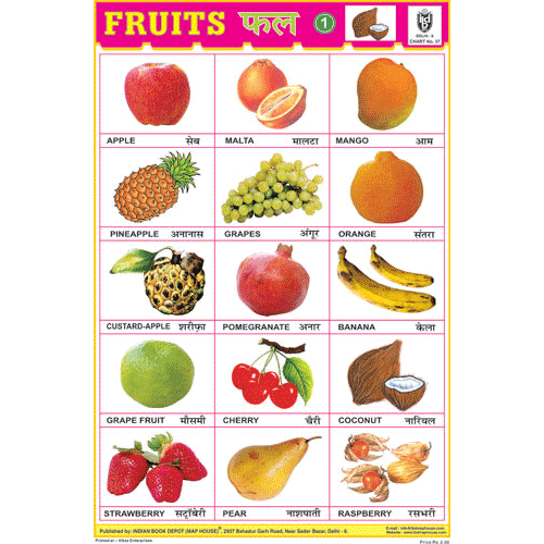 FRUITS CHART NO.1 SIZE 24 X 36 CMS CHART NO. 37 - Indian Book Depot (Map House)