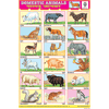 DOMESTIC ANIMALS CHART SIZE 12X18 (INCHS) 300GSM ARTCARD - Indian Book Depot (Map House)