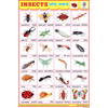 INSECTS CHART SIZE 12X18 (INCHS) 300GSM ARTCARD - Indian Book Depot (Map House)