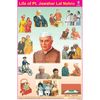 LIFE OF PT.JAWAHAR LAL NEHRU CHART SIZE 12X18 (INCHS) 300GSM ARTCARD - Indian Book Depot (Map House)