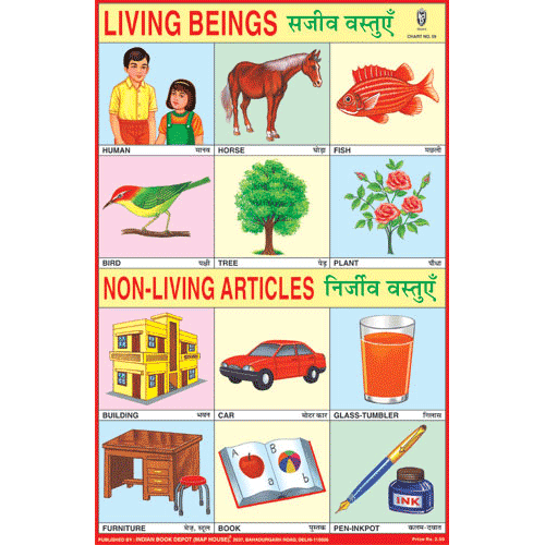 LIVING & NON LIVING ARTICLES SIZE 24 X 36 CMS CHART NO. 59 - Indian Book Depot (Map House)