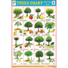 TREES CHART SIZE 24 X 36 CMS CHART NO. 94 - Indian Book Depot (Map House)