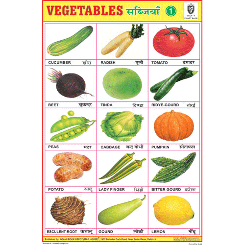 VEGETABLES CHART NO.1 SIZE 24 X 36 CMS CHART NO. 96 - Indian Book Depot (Map House)
