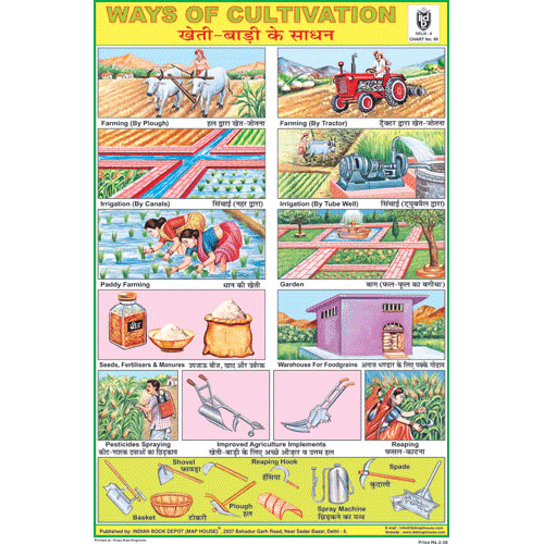 WAYS OF CULTIVATION SIZE 24 X 36 CMS CHART NO. 99 - Indian Book Depot (Map House)