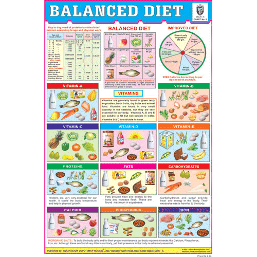 BALANCED DIET SIZE 24 X 36 CMS CHART NO. 9 - Indian Book Depot (Map House)