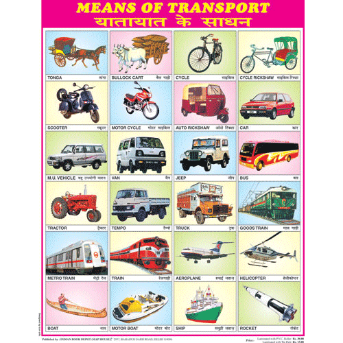 MEANS OF TRANSPORT CHART SIZE 45 X 57 CMS - Indian Book Depot (Map House)
