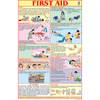 FIRST AID CHART (ENGLISH) CHART SIZE 50 X 75 CMS - Indian Book Depot (Map House)