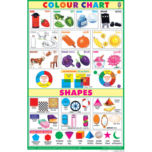 COLOUR & SHAPES CHART SIZE 50 X 75 CMS - Indian Book Depot (Map House)