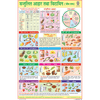 BALANCED DIET (HINDI) CHART SIZE 50 X 75 CMS - Indian Book Depot (Map House)