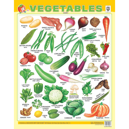 VEGETABLES CHART SIZE 55 X 70 CMS - Indian Book Depot (Map House)