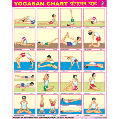 YOGASAN CHART SIZE 55 X 70 CMS - Indian Book Depot (Map House)