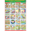 POLLUTION & ENVIRONMENT CHART CHART SIZE 70 X 100 CMS - Indian Book Depot (Map House)