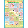 YOGASAN CHART CHART SIZE 70 X 100 CMS - Indian Book Depot (Map House)