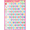 NUMERICAL CHART CHART SIZE 70 X 100 CMS - Indian Book Depot (Map House)