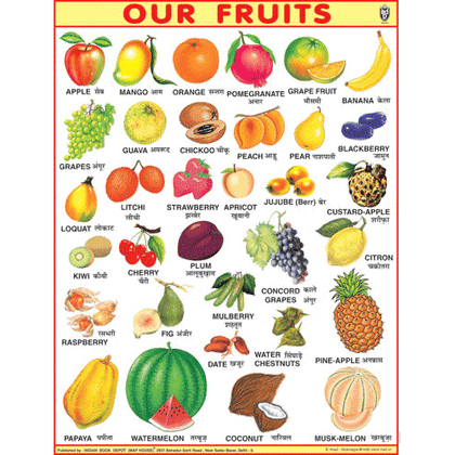 OUR FRUITSJUMBO CHART SIZE 100 X 140 CMS - Indian Book Depot (Map House)