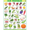 OUR VEGETABLESJUMBO CHART SIZE 100 X 140 CMS - Indian Book Depot (Map House)