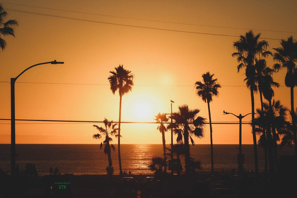 Venice Beach Sunset - J. Thomas Photography