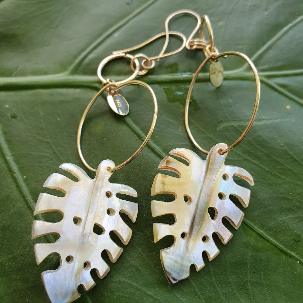 Monstera Fiji Oyster Shell Earrings 14k Gold Filled - FJD$ - Adorn Pacific