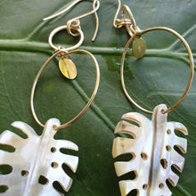 Load image into Gallery viewer, Monstera Fiji Oyster Shell Earrings 14k Gold Filled - FJD$ - Adorn Pacific - Fiji Jewelry