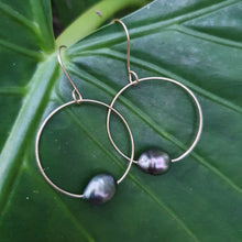 Load image into Gallery viewer, Hoop Earrings with Fiji Pearls - 14k Gold Filled FJD$ - Adorn Pacific - Fiji Jewelry