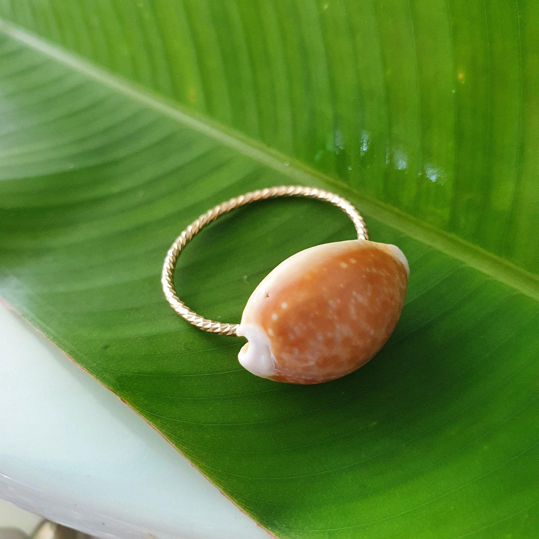 Fiji Shell Ring - 14k Gold Filled FJD$ - Adorn Pacific - Fiji Jewelry