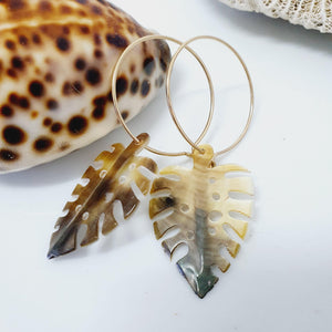 Monstera Carved Fiji Oyster Hoop Earrings in 14k Gold Filled or 925 Sterling Silver - FJD$