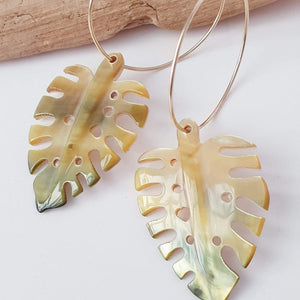 Monstera Carved Fiji Oyster Hoop Earrings in 14k Gold Filled or 925 Sterling Silver - FJD$ - Adorn Pacific - Fiji Jewelry