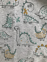 Load image into Gallery viewer, Grey Dino Fabric