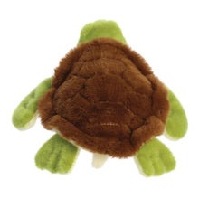 Load image into Gallery viewer, Eco Nation Turtle 10.5in