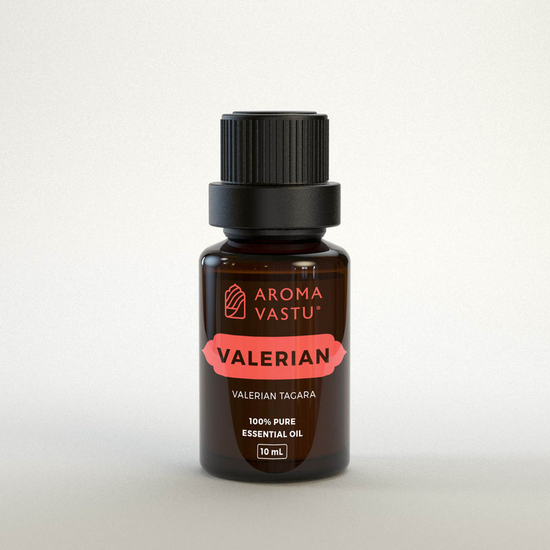 Valerian Pure Essential Oil