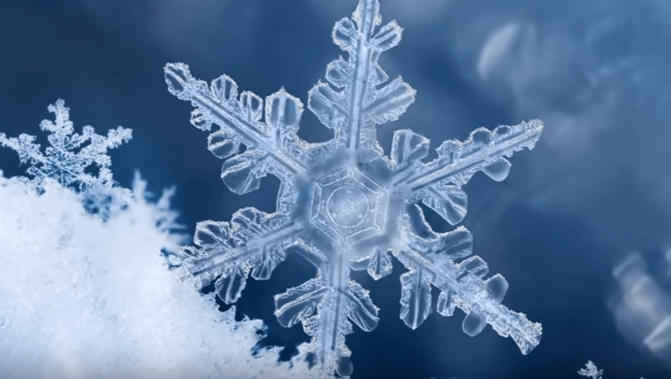 snowflake details close up view blue background