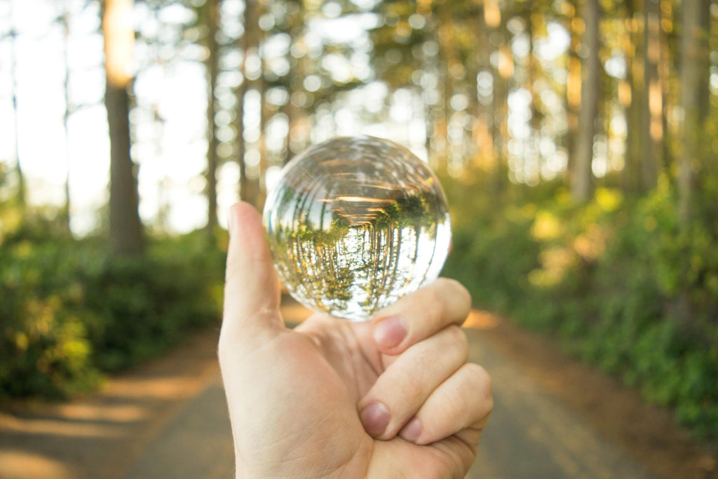 hand holding clear sphere crystal in a forest background