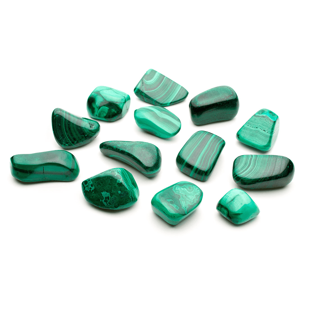 thirteen pieces of polished malachite pebbles on a white background