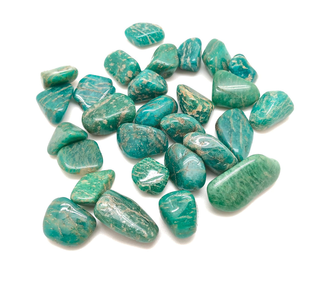 many pieces of smooth turquoise colored stones white background