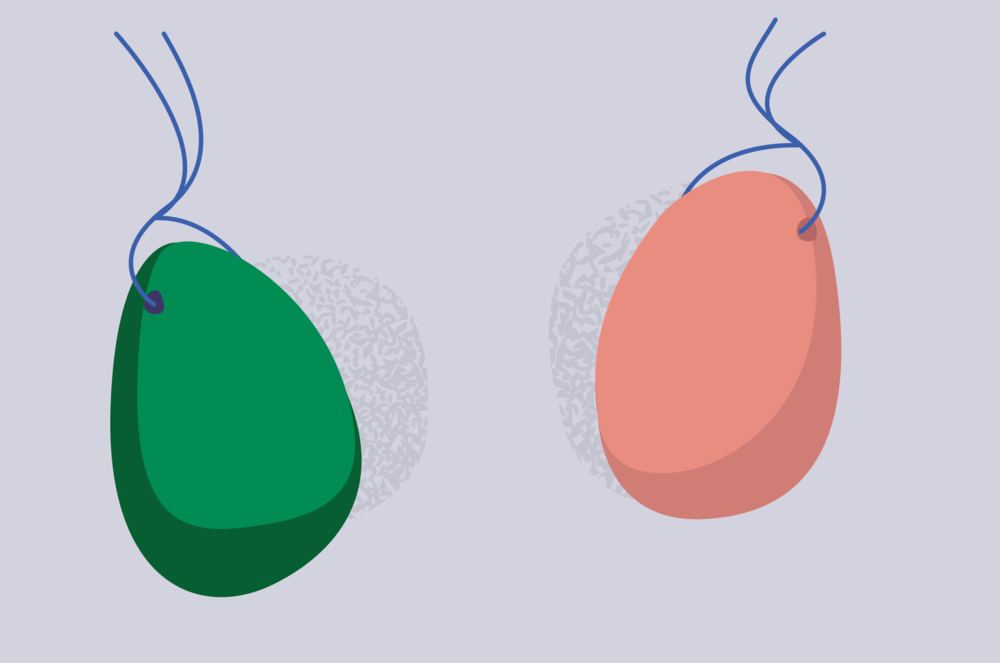 digital illustration of yoni eggs green and pink