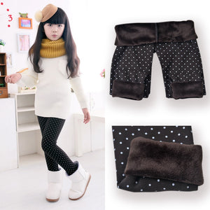 Super Warm adn Stylish Autumn/Winter Cotton Warm Legging