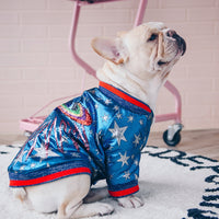 Luxurious Golly Golly Warm Sport Retro Dog Hoodies