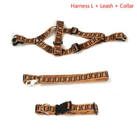 Luxury Dog Collar Leash Set for Small Dogs