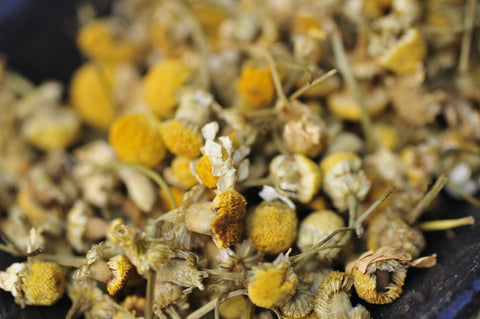 CHAMOMILE herbal infusion