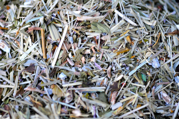 Healer's Immunity herbal infusion | Lemongrass & Echinacea