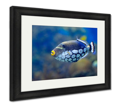 Framed Print, Underwater Image Of Tropical Fishes
